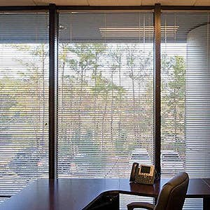 View All Window Blinds